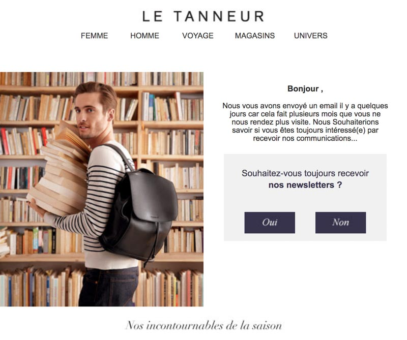 Emailing de gestion des inactifs Letanneur.com