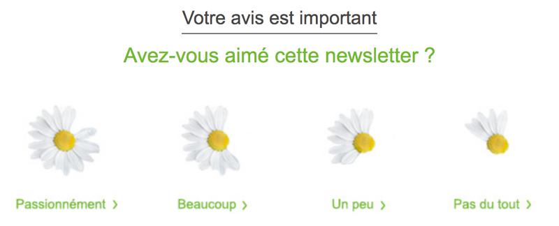 Sondage de satisfaction de la newsletter Gammvert.fr
